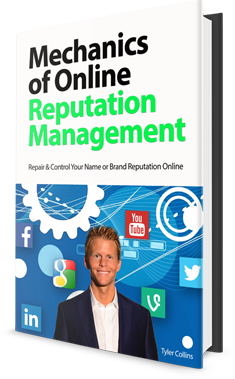 mechanics of online online reputation management